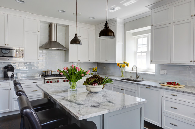 Grey And White Delight Transitional Kitchen Chicago