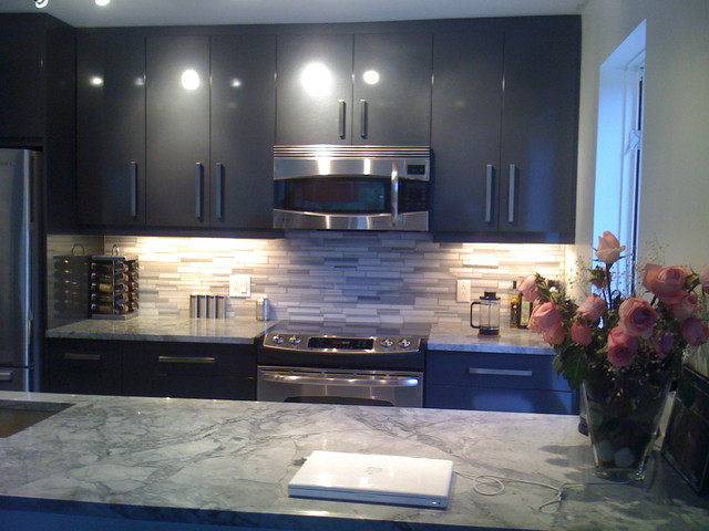 Contemporary Kitchen Grey grey kitchen with granite coutertop