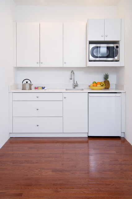 Guest Cottage - Modern - Kitchen - DC Metro - by Commonwealth Home Design