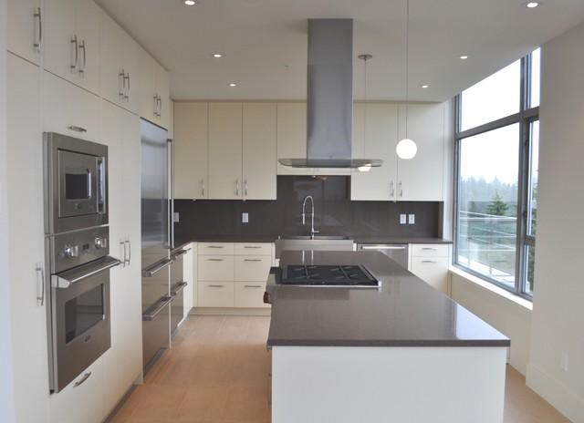 Hampton Place . Tanya Schoenroth Design contemporary-kitchen