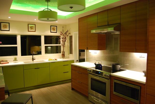 Hazelbrook contemporary-kitchen