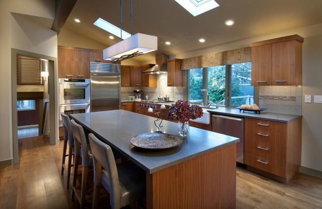 Hendrickson kitchen contemporary-kitchen