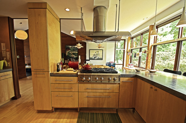 Hidden in the trees contemporary-kitchen
