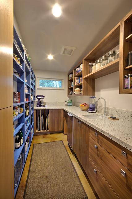 Modern Midcentury Modern Kitchen Sacramento By Mak Design Build Inc