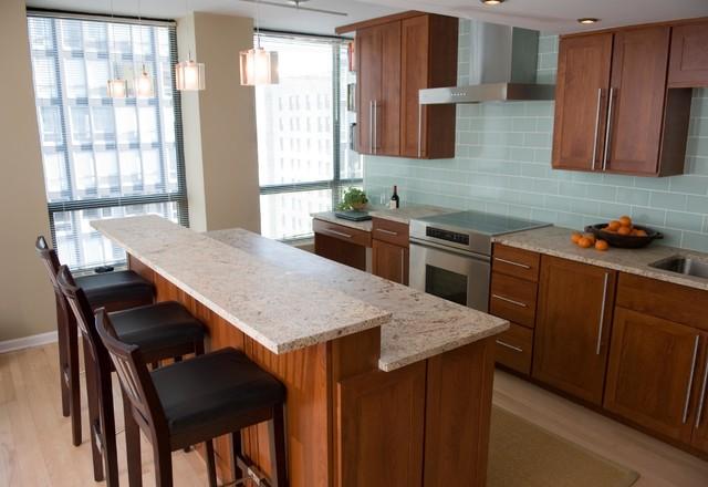 High Rise Kitchen II contemporary-kitchen
