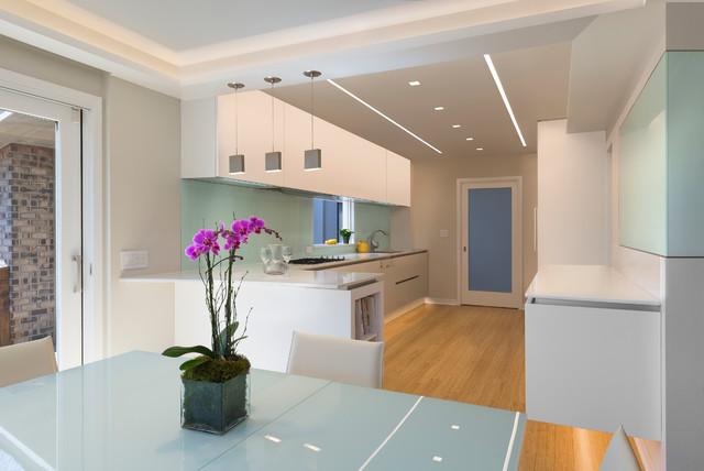 Highland Park Residence contemporary-kitchen