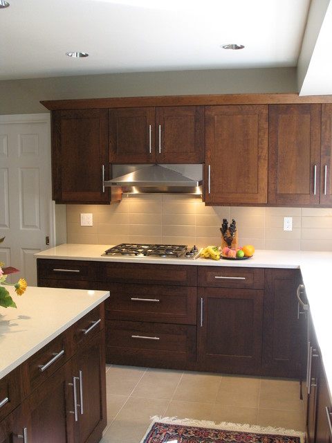 Hillcrest Kitchen Renovation contemporary-kitchen
