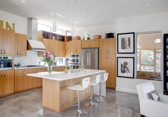 Hoffman Residence contemporary-kitchen