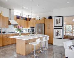 Hoffmanresidence_kitchen contemporary-kitchen