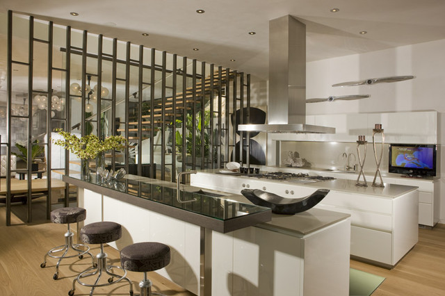 Hollywood Hills Residence modern-kitchen