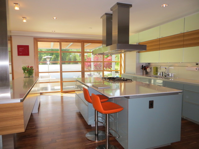 House NNS contemporary-kitchen