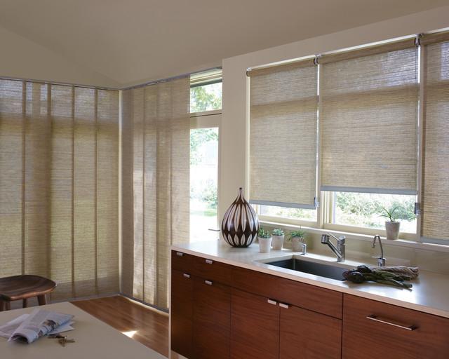 Hunter douglas designer roller shade contemporary for Designer window treatments