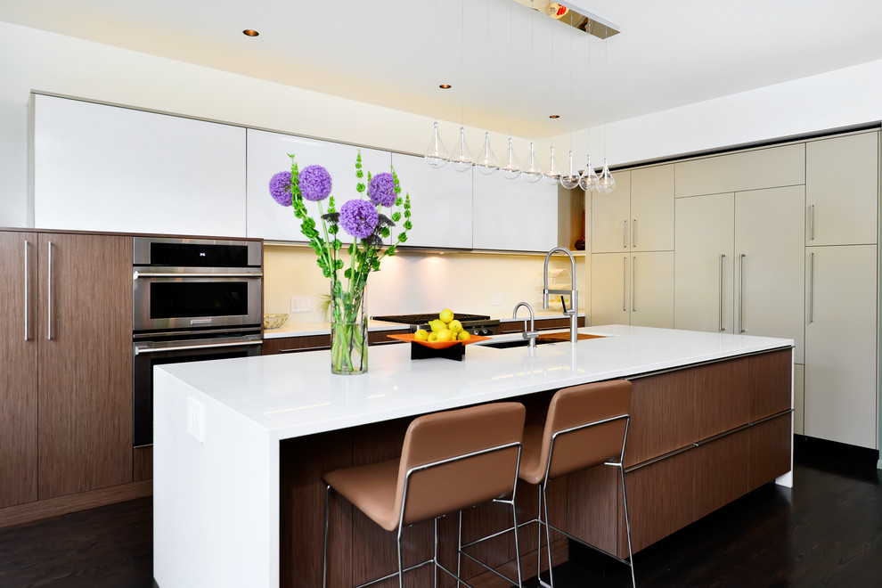 Huron - Contemporary - Kitchen - Chicago - by Dresner ...