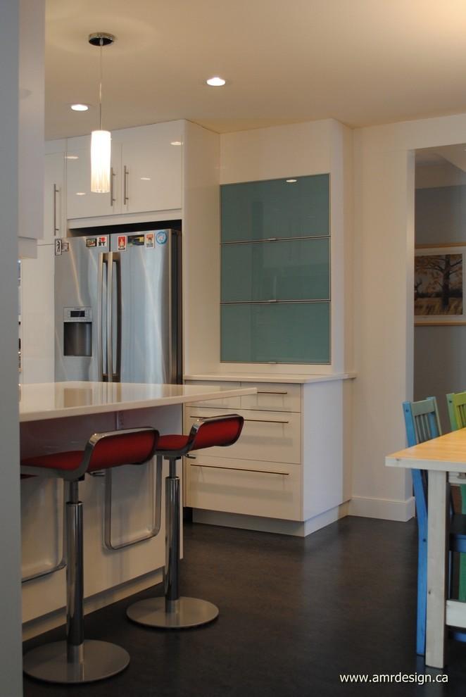 ikea kitchen  modern  kitchen  edmonton amr