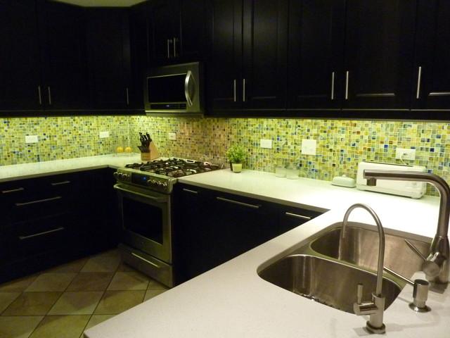 IKEA Ramsjo Kitchen Remodel - Contemporary - Kitchen - chicago