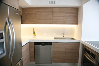 Ilona Lofts Ii Modern Kitchen Miami By Boudreaux