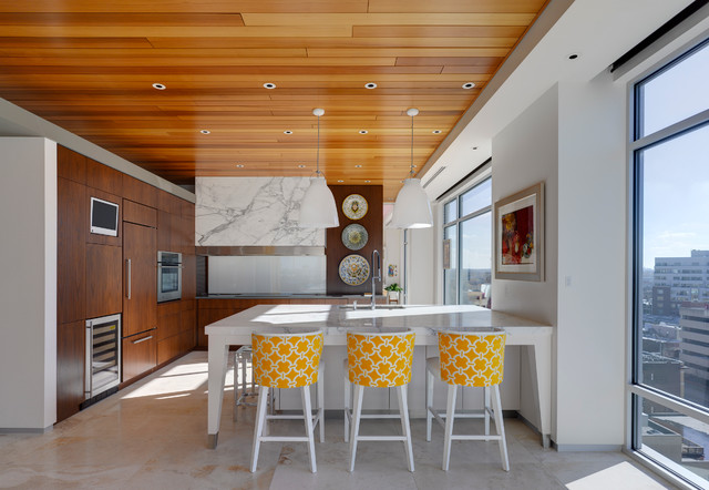Indianapolis Urban Penthouse Contemporary Kitchen Indianapolis By Haus Architecture
