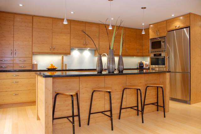 Interior Main Floor Renovation contemporary-kitchen