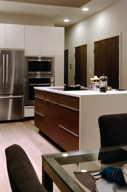 Irving Street contemporary-kitchen