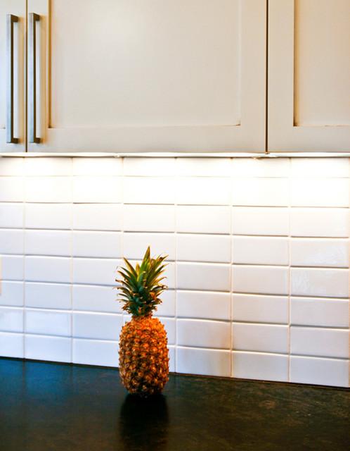 Irvington Kitchen contemporary-kitchen