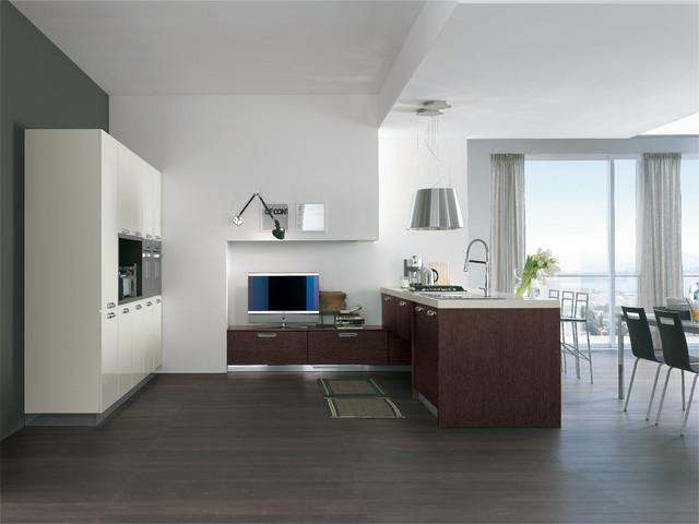 Italian Kitchens ( AREA) contemporary-kitchen