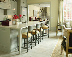 J. Hirsch Interior Design Portfolio transitional-kitchen