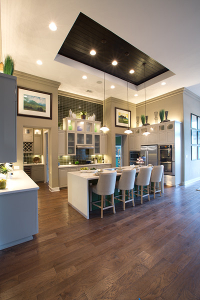 Jimmy Jacobs Custom Homes Crystal Falls Model Contemporary