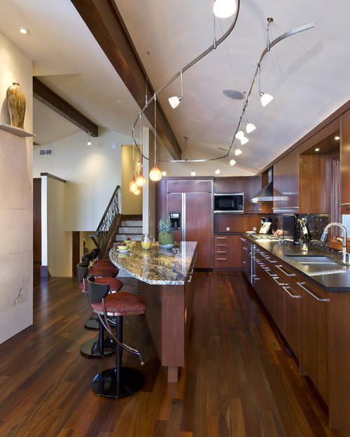 contemporary kitchen Track Lighting, Modernized