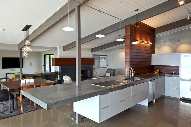 Jones House modern-kitchen