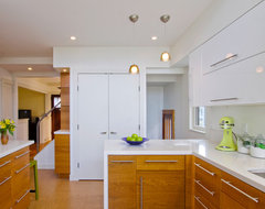 Kitchen Addition of Gotting Residence contemporary-kitchen
