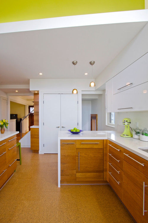 Kitchen Addition of Gotting Residence contemporary kitchen