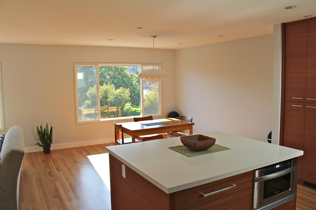 Kitchen and Dining/Living Room remodel modern-kitchen