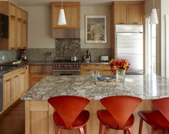 Kitchen transitional-kitchen
