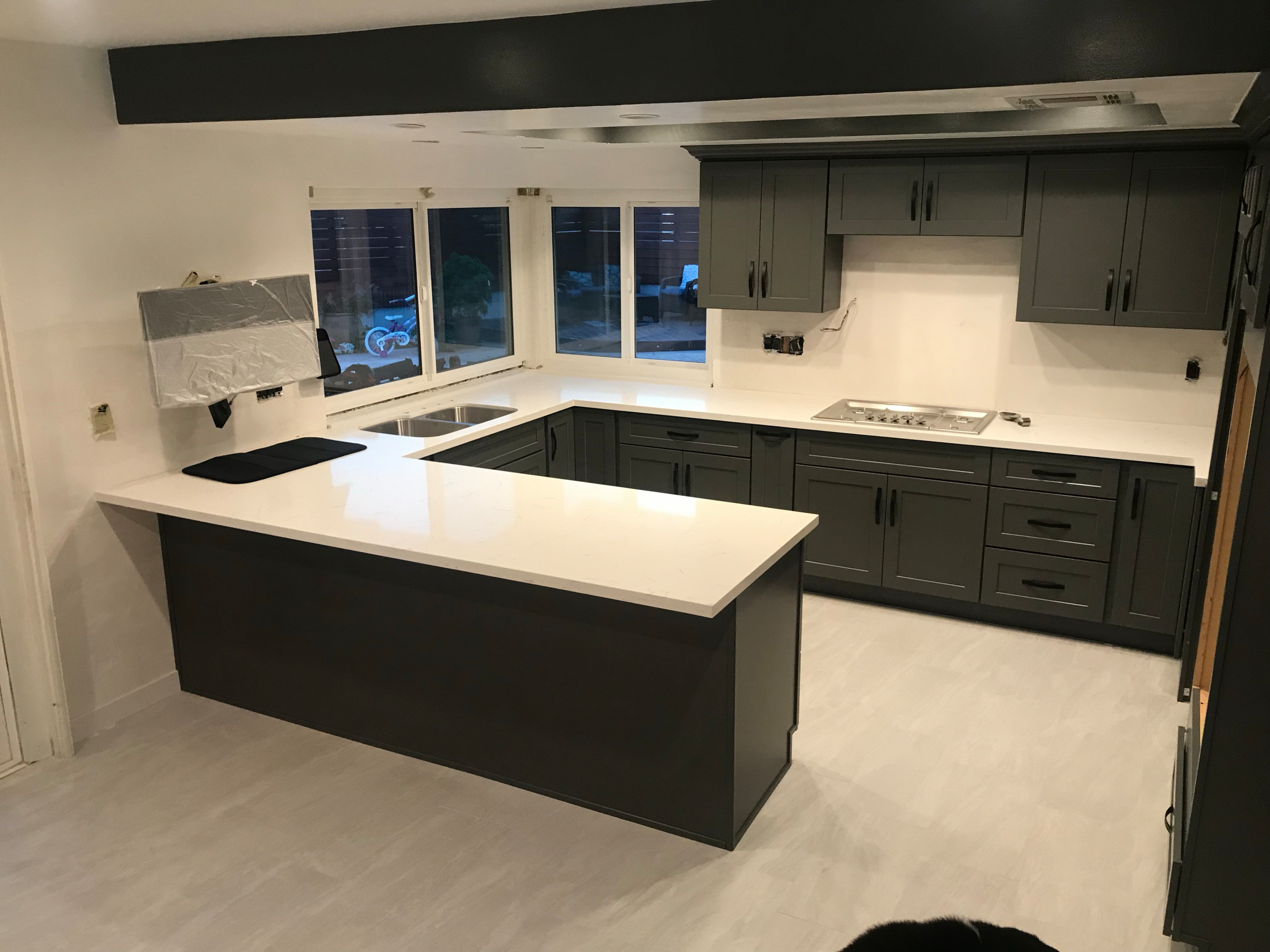 Kitchen cabinets and counter 2