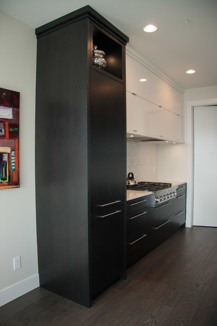Kitchen Cabinets modern-kitchen