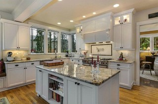 Kitchen Design / Remodel craftsman-kitchen