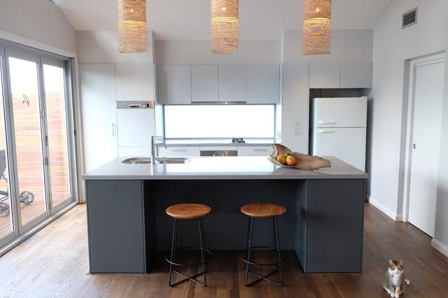 Kitchen Design Willoughby Contemporary Kitchen Sydney By Martina Hayes Interior Design