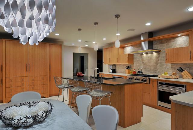 Kitchen Designs by Ken Kelly 15 contemporary-kitchen