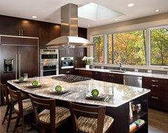 Kitchen Designs contemporary-kitchen