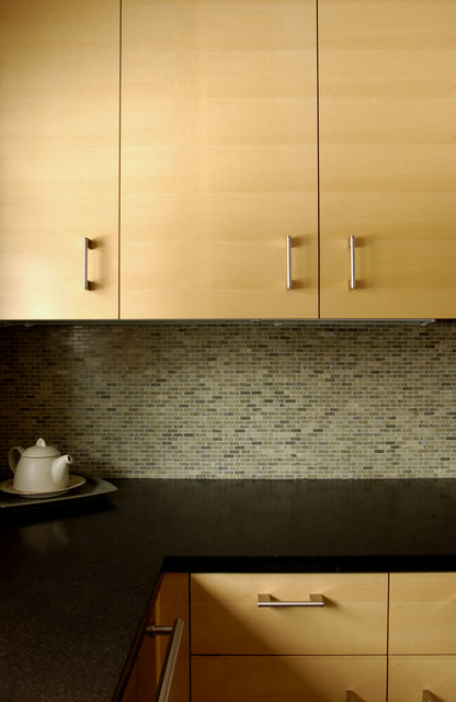 Naturally Modern contemporary-kitchen
