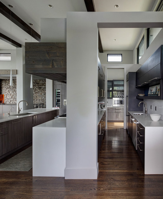 kitchen contemporary kitchen indianapolis by fredman design group. Black Bedroom Furniture Sets. Home Design Ideas