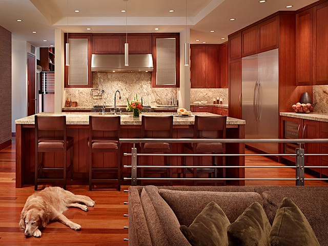Kitchen contemporary-kitchen
