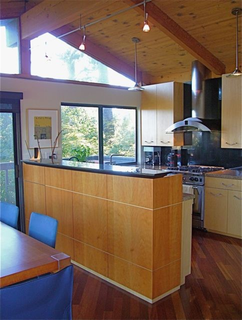 Jamie Snavley contemporary-kitchen