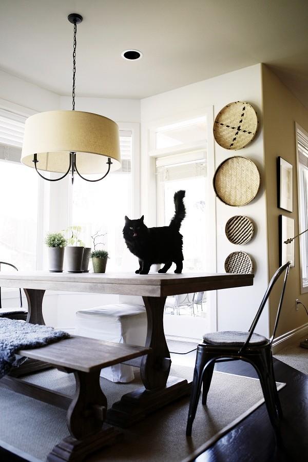 Kitchen - eclectic kitchen idea in Seattle
