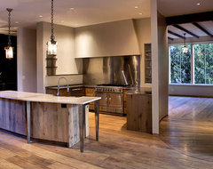 Kitchen of Your Dreams contemporary-kitchen