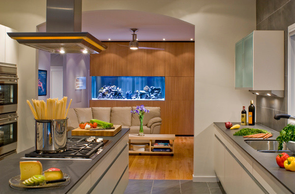 Kitchen Projects In Washington Dc Contemporary Kitchen Dc Metro By Carnemark Design Build