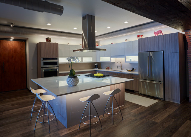 Kitchen Redux Modern Kitchen Other By Shawn Rivett Designs
