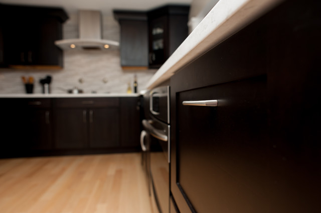 Kitchen Remodeling in Potomac MD traditional-kitchen
