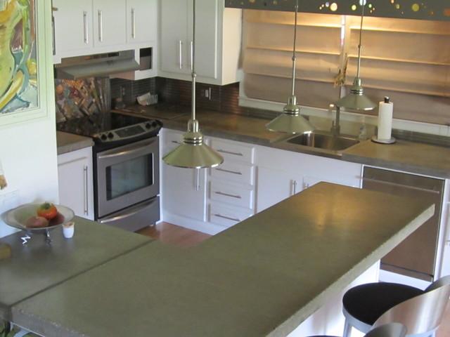 kitchen renovation for $3000 BUDGET contemporary-kitchen