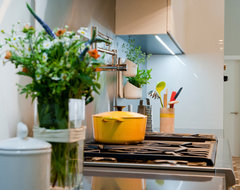 Kitchen renovation project in Palo Alto contemporary-kitchen-cabinets